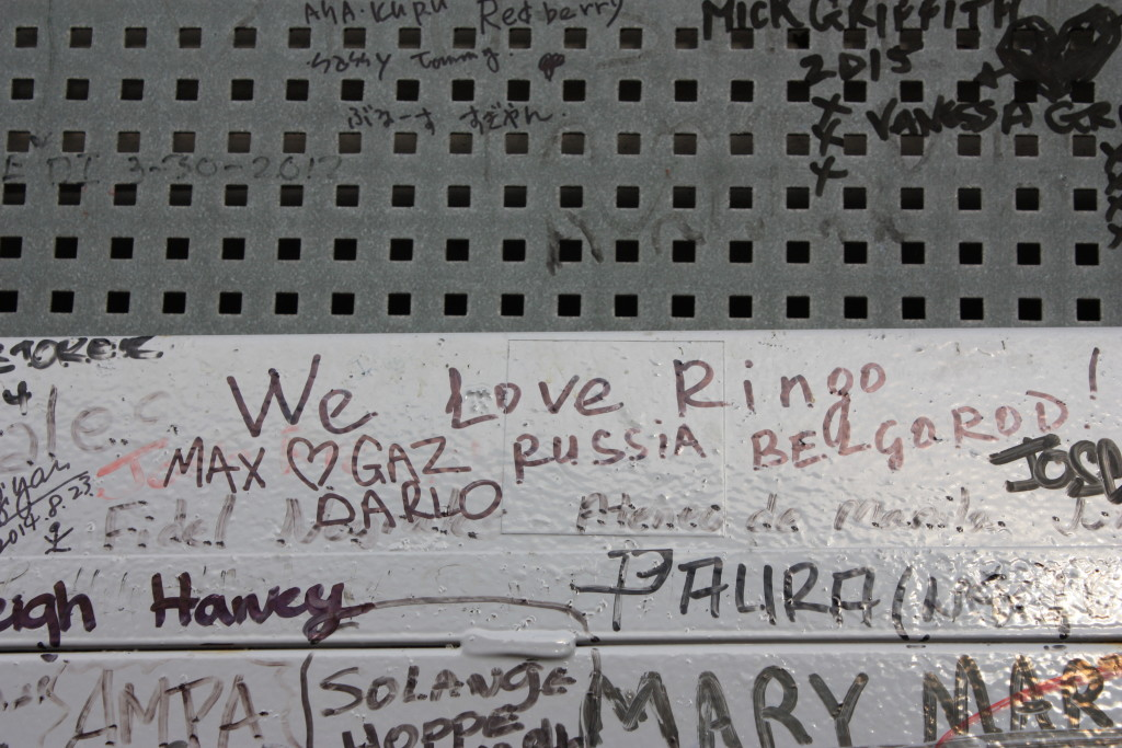 We Love Ringo!